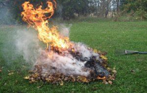 burning leaves