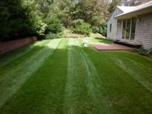 Mowing Services RI