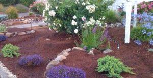 Garden Install RI