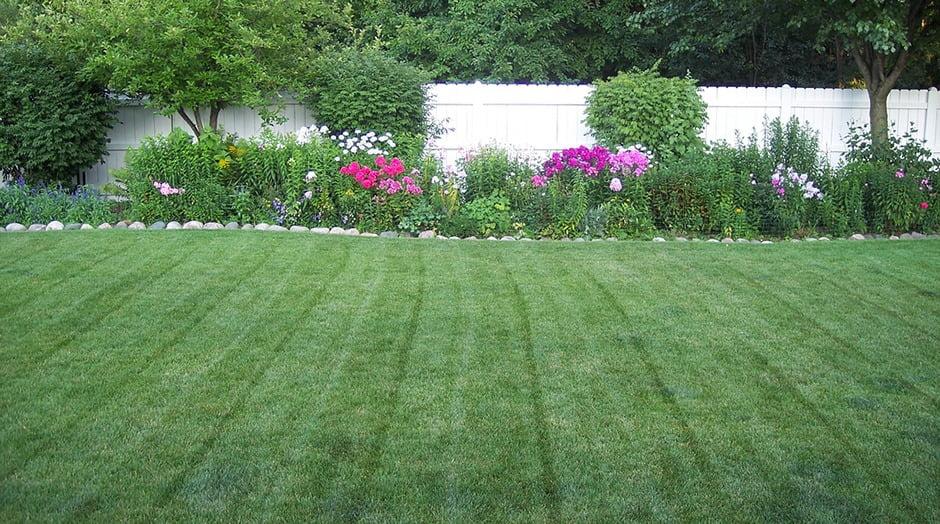 freshly-cut-lawn-garden