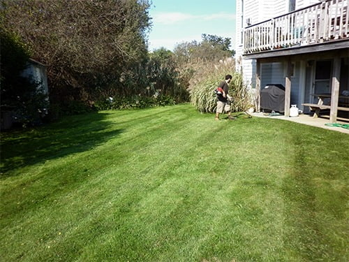 its-time-to-sow-grass-seed