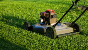 Lawn Mowing RI